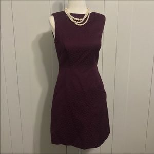 New! The Limited Dress | Size 0 |